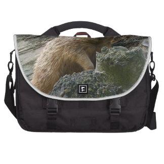 Meerkat Laptop Bags