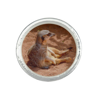 Meerkat Lazy Days, Silver Round Ring.