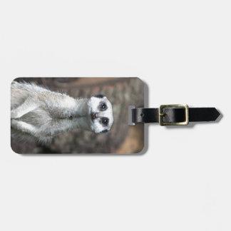 Meerkat Luggage Tags
