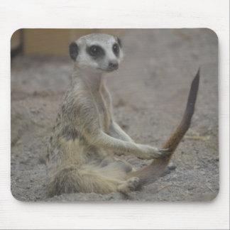 Meerkat Mouse Mats