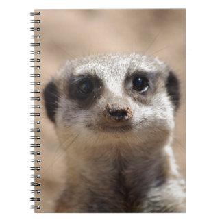 Meerkat Note Books