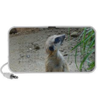 Meerkat Notebook Speaker