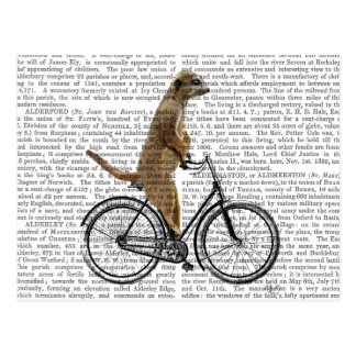 Meerkat on Bicycle Postcard
