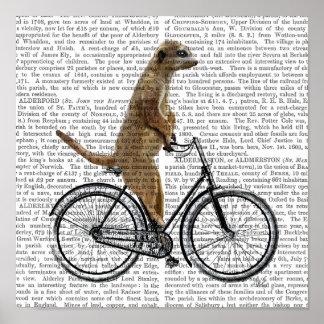 Meerkat on Bicycle Poster