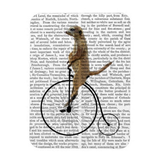 Meerkat on Black Penny Farthing Magnet