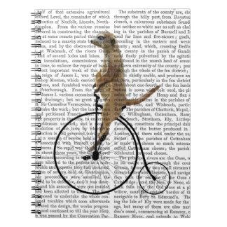 Meerkat on Black Penny Farthing Notebook
