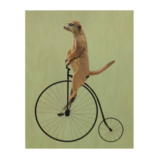 Meerkat on Black Penny Farthing Wood Print