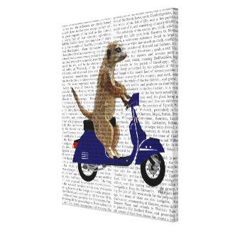 Meerkat on Dark Blue Moped Canvas Print