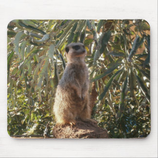 Meerkat On Guard Duty, Mouse Mat