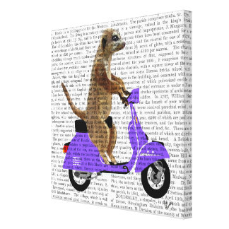 Meerkat on Lilac Moped Canvas Print