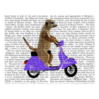 Meerkat on Lilac Moped Postcard