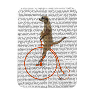 Meerkat on Orange Penny Farthing Magnet