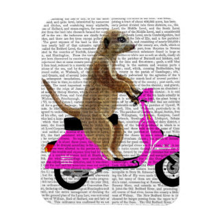 Meerkat on Pink Moped Magnet