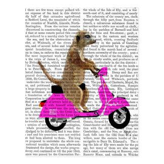 Meerkat on Pink Moped Postcard