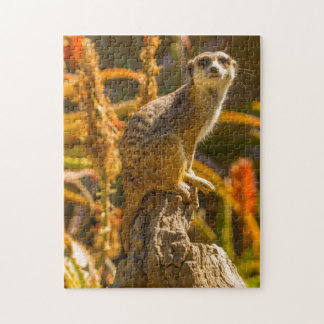 Meerkat on stump jigsaw puzzle