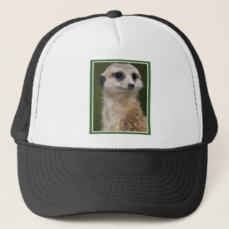 Meerkat on the look out trucker hat