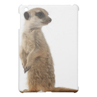 Meerkat or Suricate - Suricata surica iPad Mini Cover