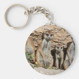 meerkat or suricate, Suricata suricatta Kalahari Key Chain