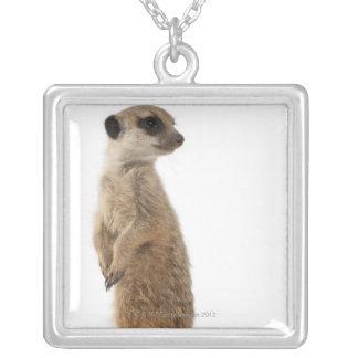 Meerkat or Suricate - Suricata suricatta Silver Plated Necklace