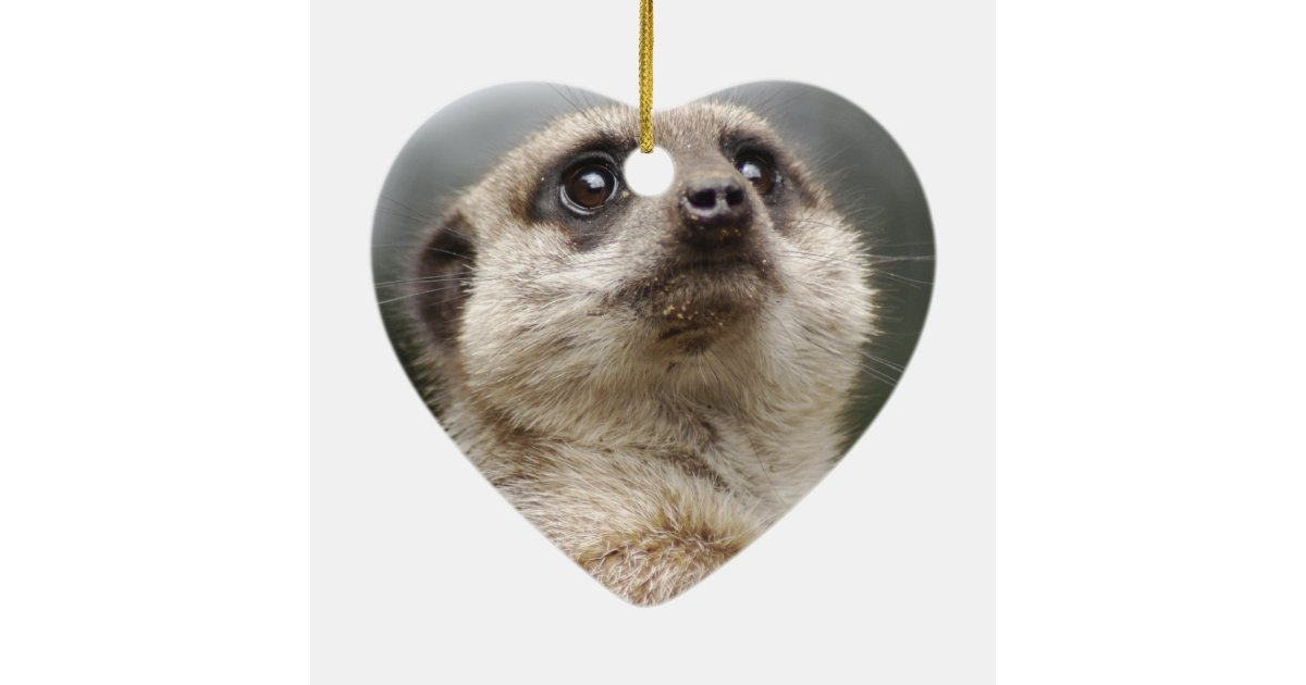 Meerkat Ornament | Zazzle.co.uk