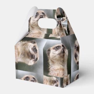 Meerkat Pattern Favour Box