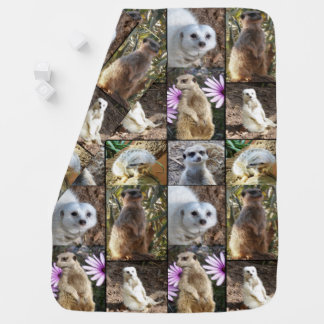 Meerkat Photo Collage, Baby Blanket