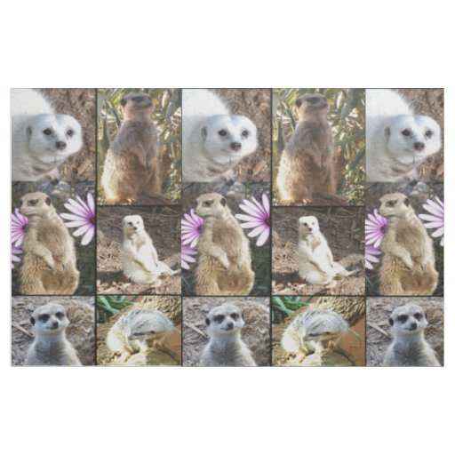 Meerkat Photo Collage Combed Cotton Material Fabric