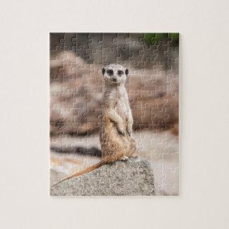 Meerkat Photo Puzzle