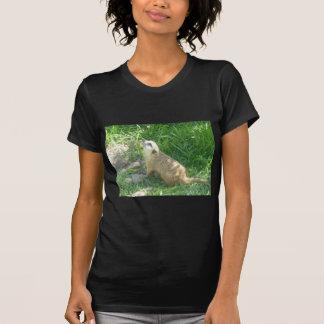 Meerkat pondering t shirts