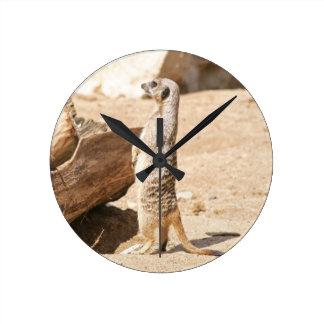 Meerkat Round Clock