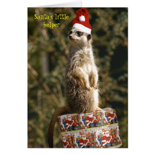 Meerkat, Santa's little helper Card