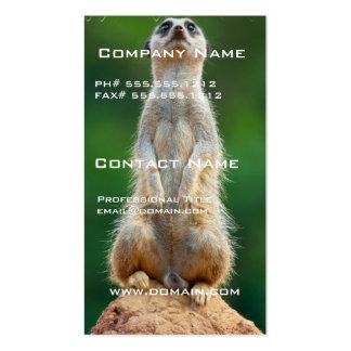 Meerkat Sentry Business Card