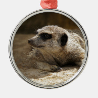Meerkat Silver-Colored Round Decoration