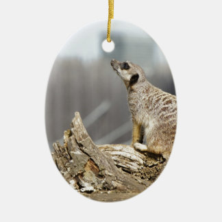 Meerkat Sniff Christmas Ornament