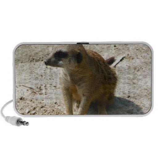Meerkat iPod Speakers