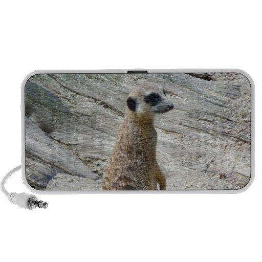 Meerkat iPhone Speaker