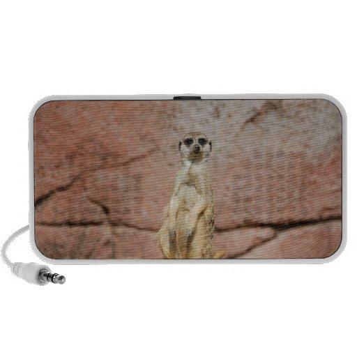Meerkat Laptop Speaker