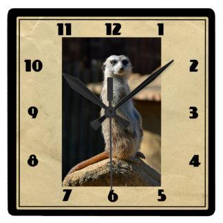 Meerkat Square Clock