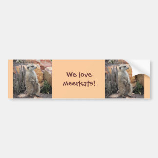 Meerkat Standing on Hind Legs Bumper Sticker