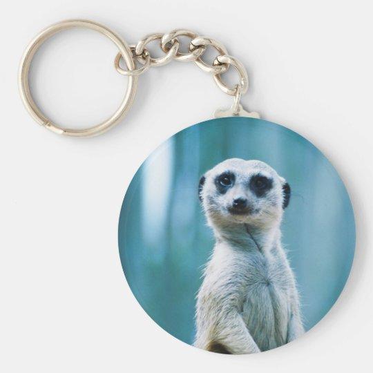 Meerkat Staredown - The Keychain