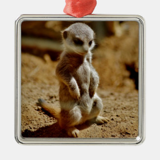 Meerkat Style Silver-Colored Square Decoration