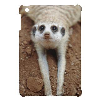 Meerkat (Suricata Suricatta) Cooling Down iPad Mini Cases