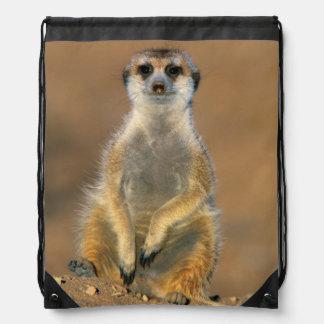 Meerkat (Suricata Suricatta) Sentinel At Den Drawstring Bag