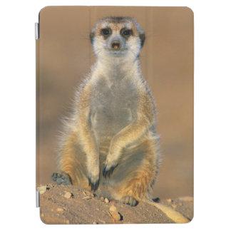 Meerkat (Suricata Suricatta) Sentinel At Den iPad Air Cover
