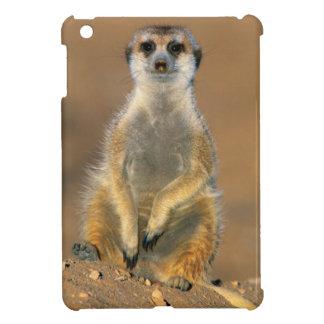 Meerkat (Suricata Suricatta) Sentinel At Den iPad Mini Cover