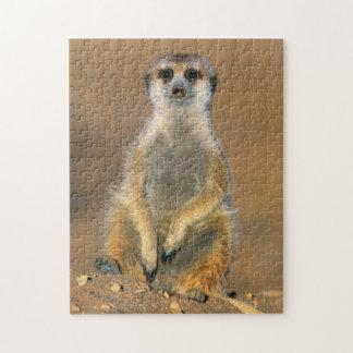 Meerkat (Suricata Suricatta) Sentinel At Den Jigsaw Puzzle