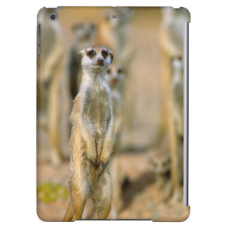 Meerkat (Suricata Suricatta) Sentinels, Karas 2 Cover For iPad Air