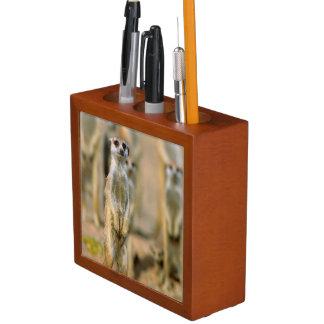 Meerkat (Suricata Suricatta) Sentinels, Karas 2 Desk Organiser