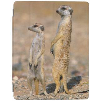 Meerkat (Suricata Suricatta) Sentinels, Karas iPad Cover