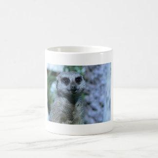 Meerkat Sweetheart Basic White Mug